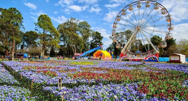 TOUR NEW ZEALAND 2019